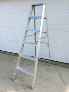 Step Ladder & Extention Ladder