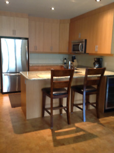 Lake front condo for rent in Sicamous