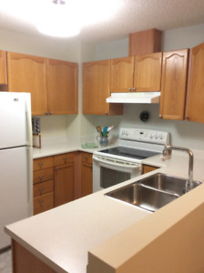 Townhouse Condo in Stony Plain - For Rent