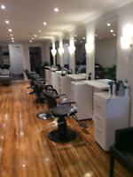 Hairstylist Wanted Yorkville
