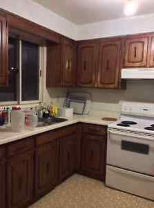 Multiple single room in a house for rent, starting Jan-2017 Kitchener / Waterloo Kitchener Area image 3