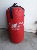 Everlasting punching bag