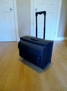 Rolling case with telescoping handle, locks