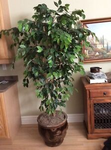 Realistic looking Large artificial plant