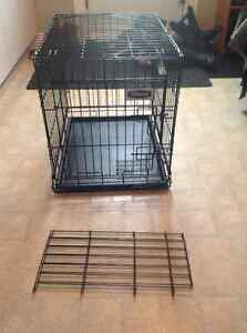 Petmate Small Collapsible Pet Crate with Insert