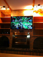 Hi Fidelity Theatre Solutions (TV and Audio Installations)