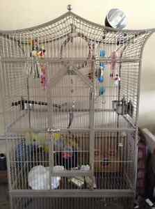 Huge bird cage must Go due to son allergy