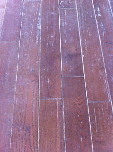 Sell Your House Faster By RestoringYour Wood Floors St. John's Newfoundland image 7