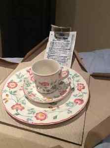 Brand New Briar Rose 3 piece place setting; 5 sets total