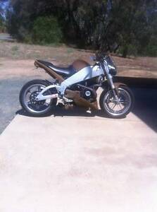 2003 buell lightning xb9 custom Echuca Campaspe Area Preview