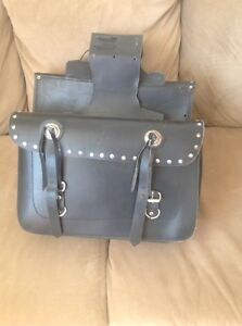 Saddle Bags .. Make an offer, want gone!!