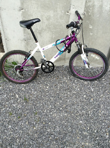 Purple, White, and Blue Techteam Bike