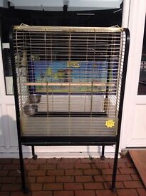 Large Parrot Cage, Bird Cages, Parrot Cage