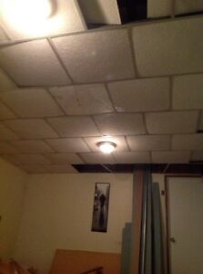 Drop ceiling, grid included