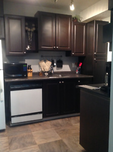 1 bedroom condo for sale- mortgage is cheaper than rent!