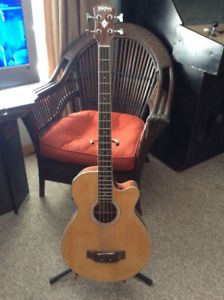 Guitar / Banjo / Acoustic Bass Collection