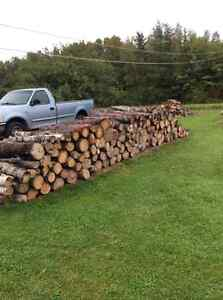 Firewood for sale in various ways