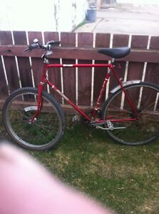 Vintage tall adult Raleigh I HAVE THE ITHER 710 cm front tire