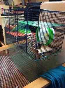 Cage a hamster tout inclus Saint-Hyacinthe Québec image 2