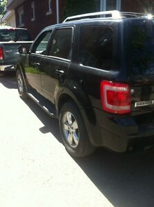 2009 ford escape xlt special edition