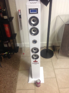 For Sale. Molson Canadian Speaker System