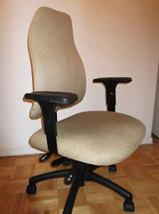 Elegant Back Support and Ergonomic Chair -  Highly Adjustable