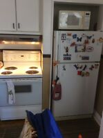 General Electric fridge and stove