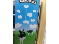 Ben & jerry's freezer ice free