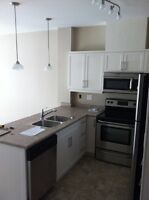 2 bed 2 bath condo for rent
