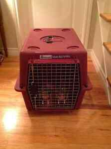 Animal carrier/kennel