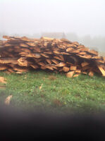 Firewood Thick pine slabs
