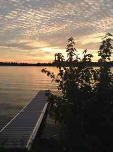 Chemong Lake cottage rental Peterborough Peterborough Area image 7