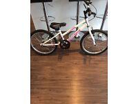 "Apollo envy girls junior bike 20"""