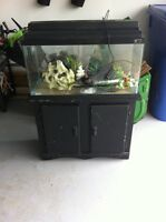 32gal fish tank and stand