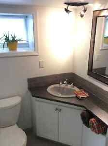 Furnished 2bdrm with great weekly and monthly discounts Kingston Kingston Area image 4
