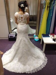 Cap Sleeve Lace Wedding dress & Cathedral Veil
