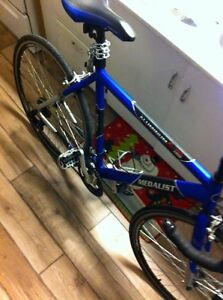 MUST GO ASAP 21 Speed street bicycle !