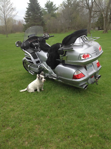 2009 Honda Goldwing Loaded