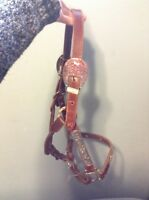 Horse halter for sale