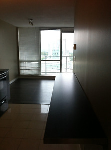 1 bedroom apt in surrey central high rise opposite holland park