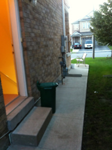 Basement Apartment for Rent-Clean & Spacious + Parking