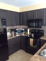 Kitchen items    CABINETS SOLD