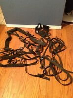 Pony driving harness