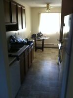 Room for rent across street from bower mall. Close to RDC