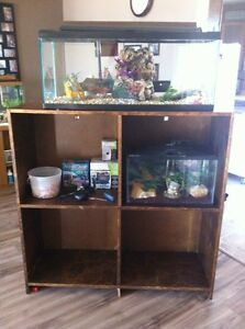 2 aquariums and stand