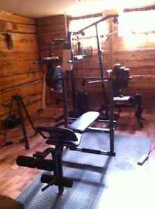 Weights and exercise machine