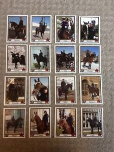 Toronto Police Mounted Unit Horse Collector Cards.