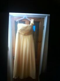 Stunning lemon colour full length dress brand new size 14, £20