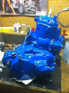 WTB LT500R Quadzilla engine