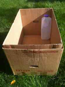 Selling Extra Sturdy Boxes for Moving and for Compact Storage